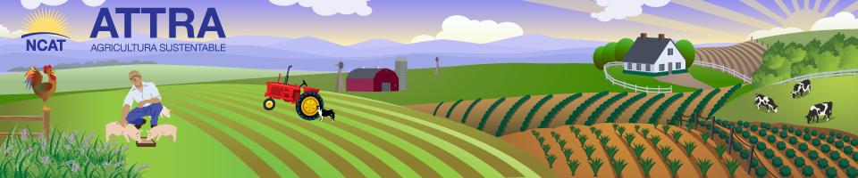 ATTRA - El Centro Nacional de Información de la Agricultura Sostenible